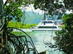 Cairns Harbour Cruises - Accommodation Mermaid Beach